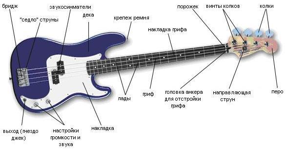 устройство бас-гитары